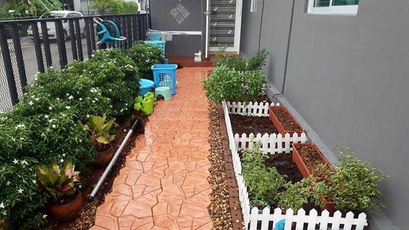 จัดสวนหลังบ้านงบน้อยด้วยตัวเอง